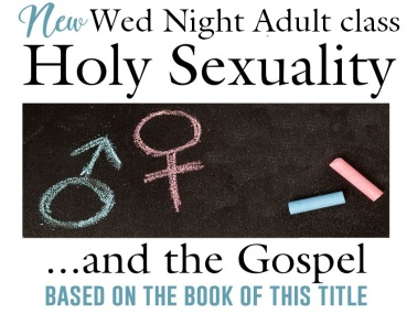 holy sexuality 2 new