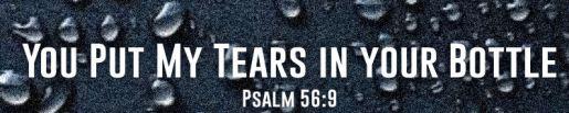 psalm 56.9.