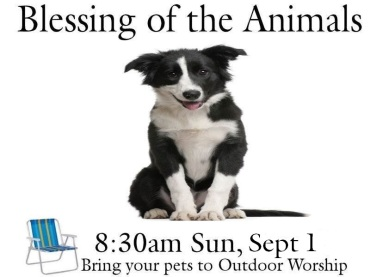 Blessing of Animals 2019